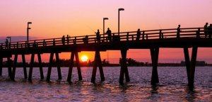 Davis Islands Tampa Florida Real Estate   Tampa Realtor   New Homes for Sale   Tampa Florida
