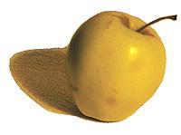 eudmon-apple.jpg