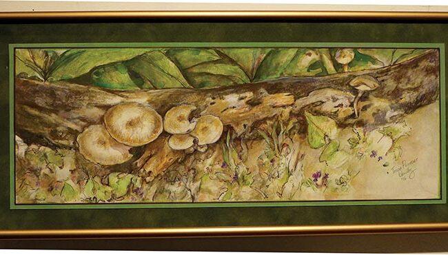 Tonia Kountz - Mushrooms Riverwest Jazz Gallery Creative Expressions II
