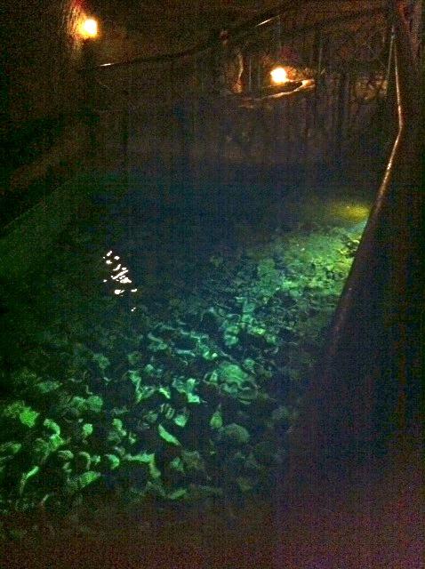 Underground Roman cistern
