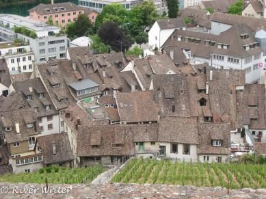 Fairy tale rooftops