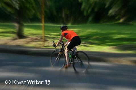 picmonkey bike