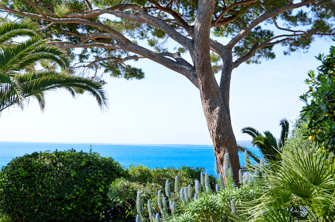 The gardens of Castel Mare in Cap d'Ail