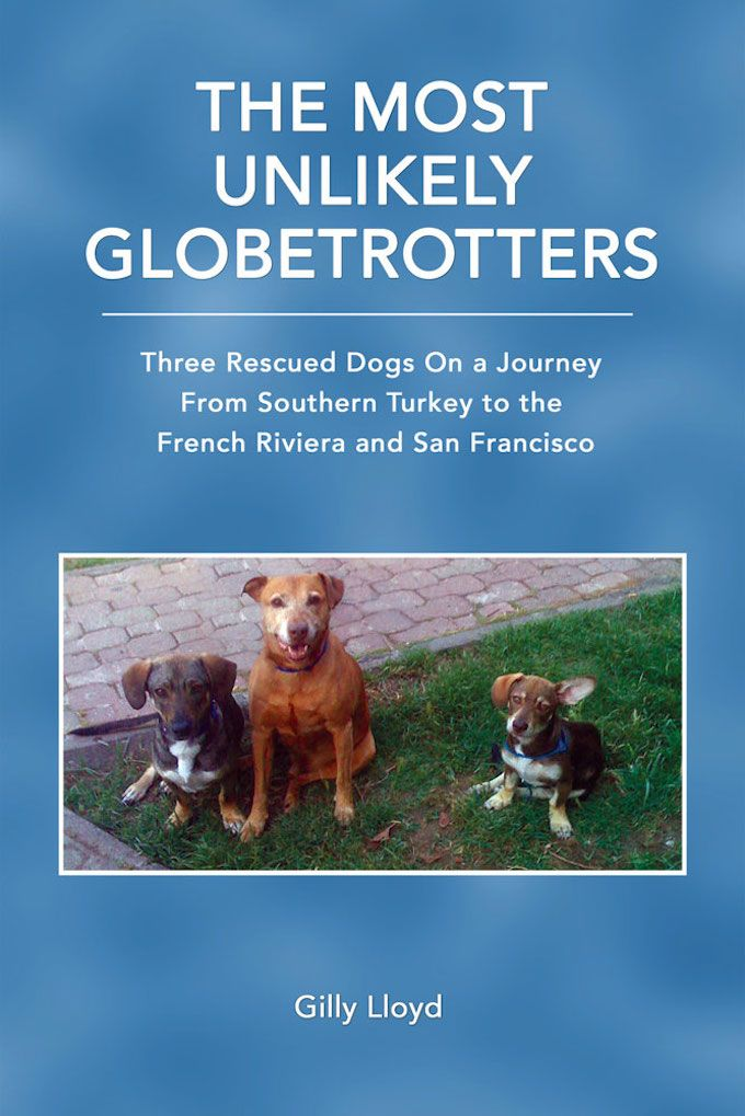 The Most Unlikely Globetrotters book cover