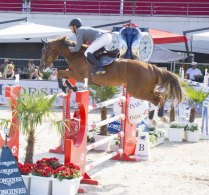 Show Jumping_21