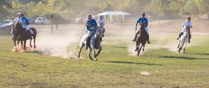 Polo at Callian in the South of France 2014 © Mike Colquhoun www.ateliermike.com
