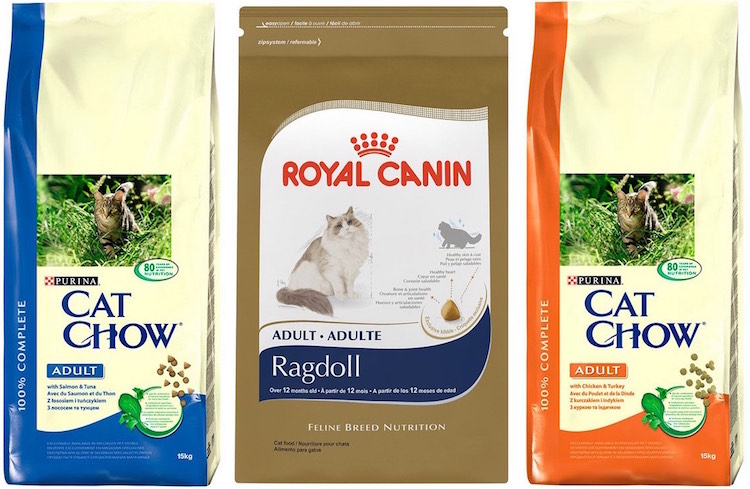 Royal Canin and Purina cat food for St. Petersburg cats
