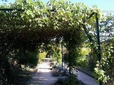 Jardin Botanique de Nice