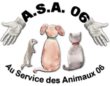 ASA 06