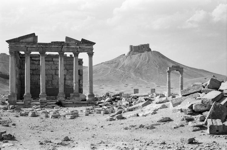 Expo Palmyre Nice