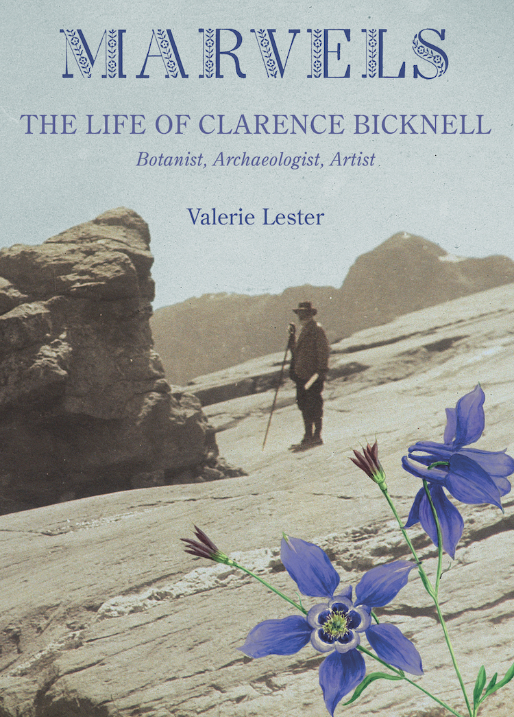 Clarence Bicknell Marvels