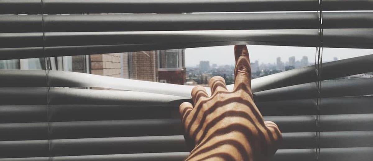world through blinds by AJ Rekhy