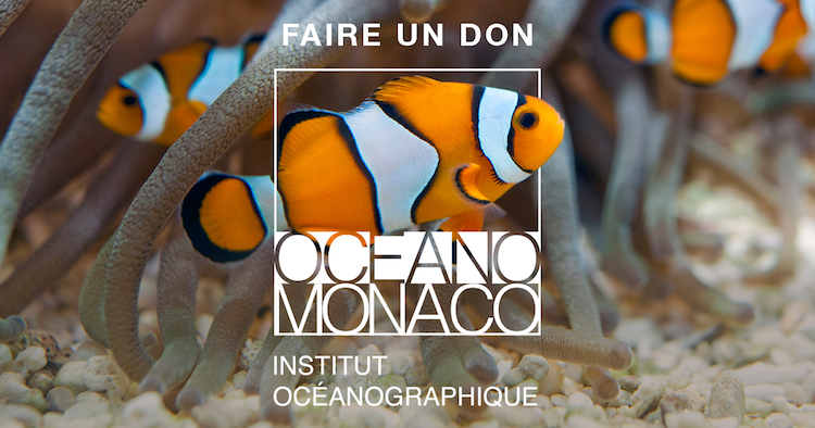 Donate to Oceanographic Museum in Monaco