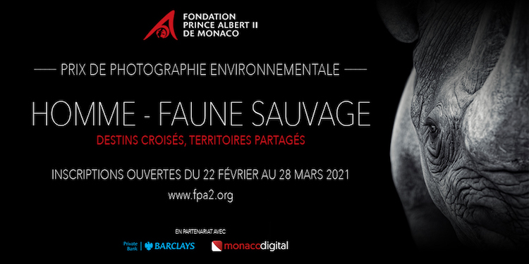 homme faune sauvage photo Expo
