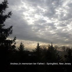 Andrea (in memoriam her father) - Springfield NJ