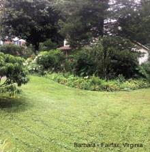 Barbara - Fairfax VA