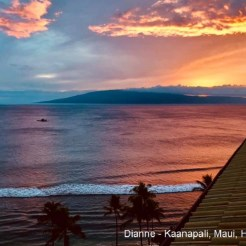 Dianne - Kaanapali Maui HI