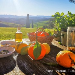 Elena - Peccioli Tuscany
