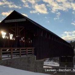 Laureen - Blenheim NY