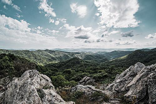 Bosco dell'Adelasia con la sua rocca