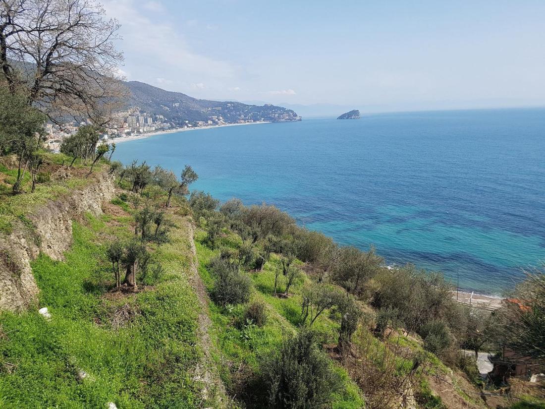 Spotorno e Noli passeggiata con vista sull'isola di Bergeggi