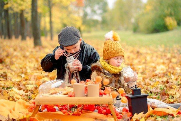 organizzare un picnic a casa autunno