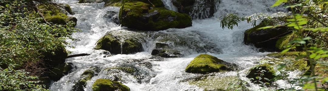 rivier boom berg & meer - zen meditatie