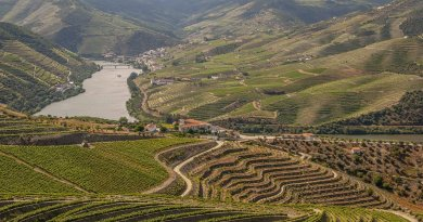 Dwalend over de Douro