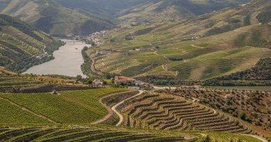 Dwalend over de Douro