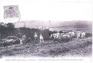 Rivière-salée Martinique - photos anciennes