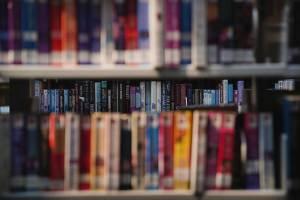 Rayons livres - Médiathèque de Rivière-Salée