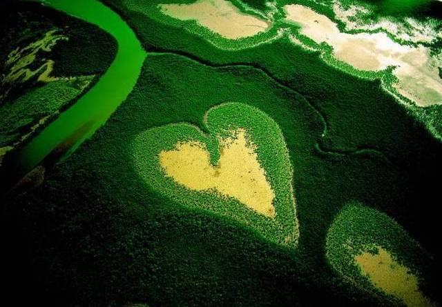 meio-ambiente-ser-um-dos-assuntos-abordados-na-rio20
