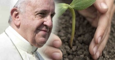 papa francesco green