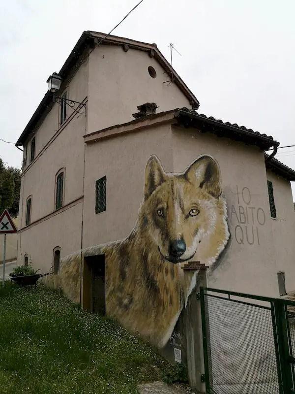 murales lupo braccano