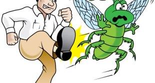 wpid pest control cartoons 811568 - افضل شركة ابادة حشرات بالرياض 0594261363