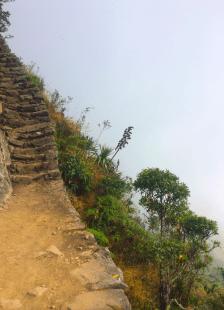Ascension de la Montana du Machu Picchu