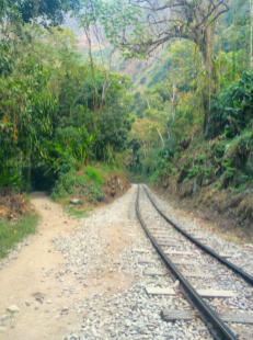 Rails du train, route pour Aguas Calientes