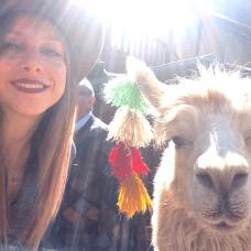 Mon premier selfie avec un lama !!