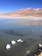 Sud lipez laguna canapa flamants rose