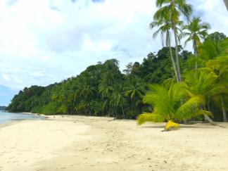 parc-isla-coiba-plongée-scuba-dive