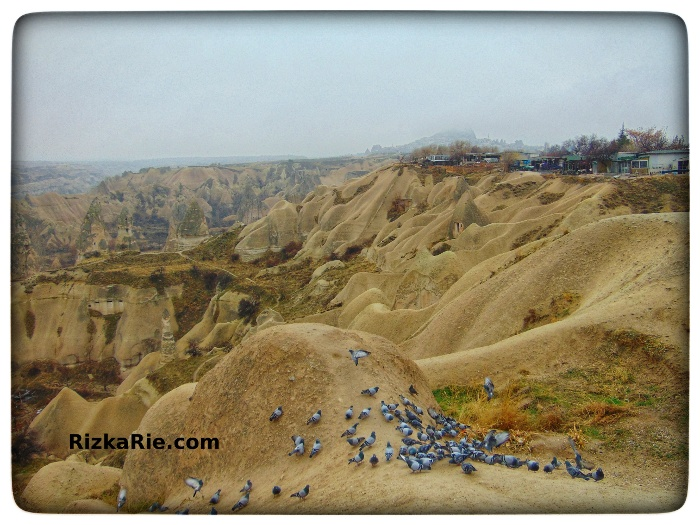 Pidgeon Valley Cappadocia, green tour cappadocia, backpacker ke turki, traveling ke turki, panduan traveling turki, cara memilih tour di turki