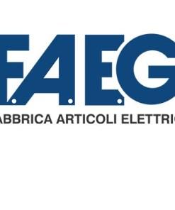 F.A.E.G.