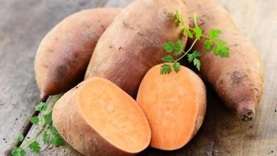 Photo of 8 فوائد صحية للبطاطا الحلوة