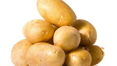 Photo of احذري تناول البطاطا في هذه الحالة