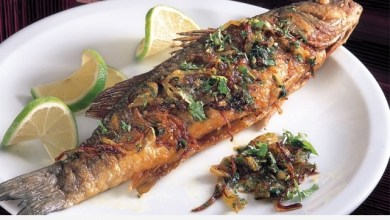 Photo of باحثون يحذرون من تناول السمك.. والسبب!