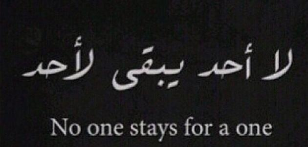 Pin by Munan Alkaz on Fact ! حقيقة | Words quotes, Funny arabic ...