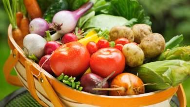 Photo of موضوع عن الاطعمة الطازجة وفوائدها في 10 اسطر