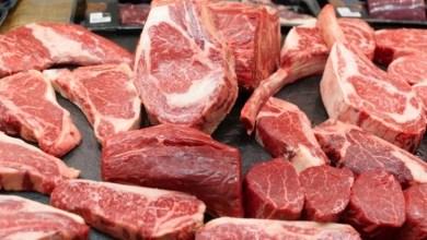 Photo of فوائد اللحم