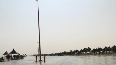 Photo of صور وفيديو لأمانة الأحساء تفصل الكهرباء عن أعمدة الكهرباء في شاطئ العقير