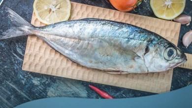 صورة فوائد السمك